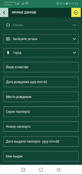 вводим личные данные с мобильного
